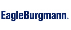 SAPMA EagleBurgman Logo